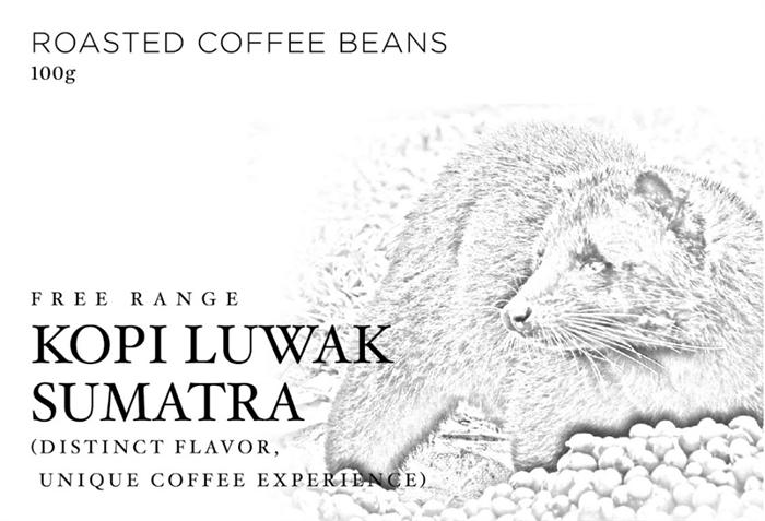 麝香貓咖啡豆(自由放牧麝香貓)